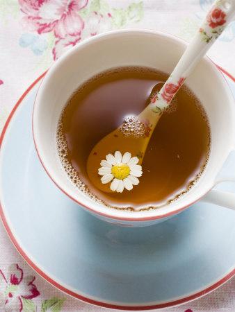 чай ласточка для похудения