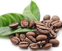 BUSHIDO 2013 натуральный кофе