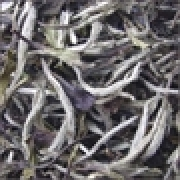 Чай Dammann PAI MU TAN / Чай Даман Пай Му Тан, 250 гр.