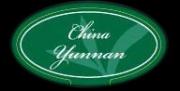 Зеленый чай в фильтр-пакетах для чайников Fine & Noble China Yunnan FOP Silver Dragon / Юннань FOP Серебрянный Дракон 20 шт.