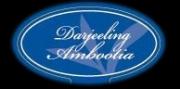 Черный чай в фильтр-пакетах для чайников Fine Noble Darjeeling Ambootia / Дарджилинг Амбутия 20 шт.